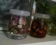 $天然bio精油と有機植物オイルで 真の美しさを引き出す ~Like a ROSE  aromatherapy~-2011083002380000.jpg