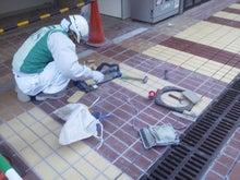 Tasukuのブログ-NEC_0661.JPG