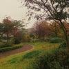 写真日記~ハーブ園お散歩~の画像