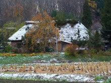チャレンジキャンプ2011-柿と稲わら雪