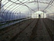 まーくんの小部屋★福岡で頑張る専業農家-2011112118540000.jpg