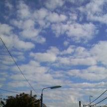 気持ちの良いお天気♪