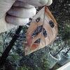 小さな秋の画像