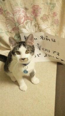 福のボンボン日記-2011112623100000.jpg