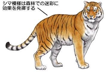 川崎悟司 オフィシャルブログ 古世界の住人 Powered by Ameba-トラ