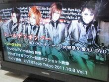 ever green-20111127233511.jpg
