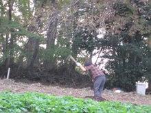 法政大学多摩キャンパスCOMMUNITY☆FIELDの農業日記