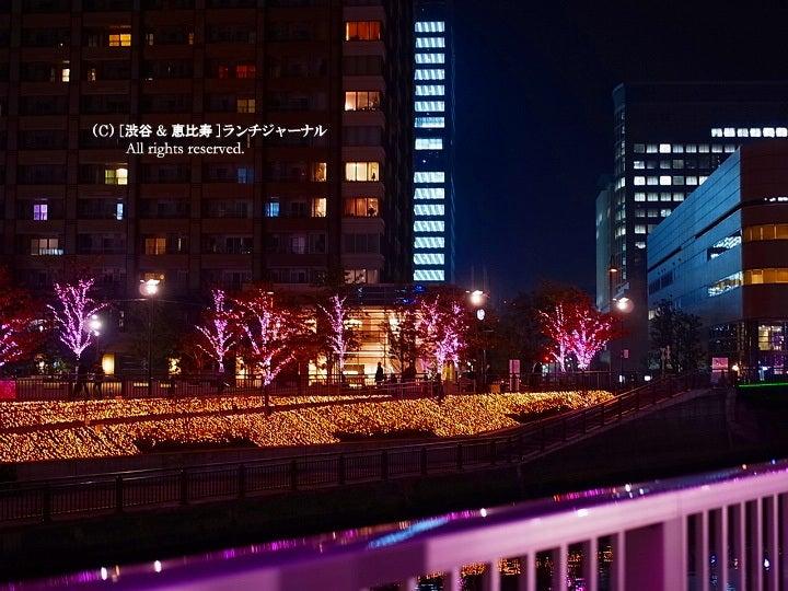 $●[渋谷&恵比寿] ランチ・ジャーナル-7