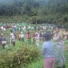 「妙(たえ)なる畑の会 (自然農)全国実践者の集い」2011in福岡の記事より