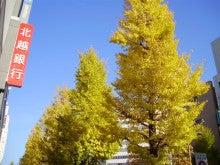 越の風ブログ  willow wind