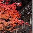京都2011秋
