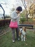 所沢の犬専門ペットシッタートコトコ -プロフィール