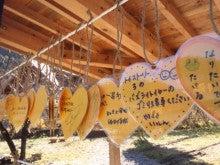 遠山郷の若いもんブログ。-DSC_0215.JPG