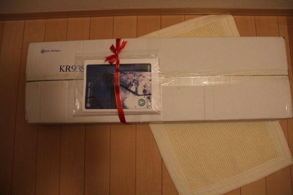 うおっち&ももの海水魚日記-KR93SP