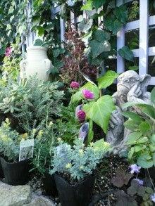 Garden&Exterior NewスタイルLife