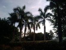 チャットで婚活、南の島へ!-F1060060.jpg