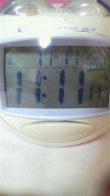たるによるたるの為のブログ-P1091002.jpg