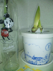 TOKYO Disney RESORT LIFE-DVC00206.jpg