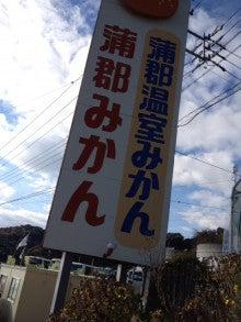愛知県瀬戸市の「ひまわり接骨院」ではトータルコンディショニングサポーターとして活動しています