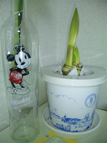 TOKYO Disney RESORT LIFE-DVC00207.jpg