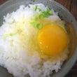 卵かけご飯。