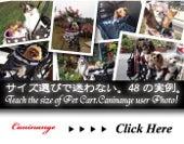天使のカート caninangeブログ