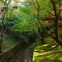 京都の写真たち