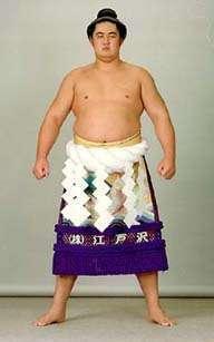 「大相撲双羽黒無料写真」の画像検索結果