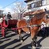 サンタが町にやってきた☆の画像