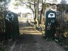 馬を愛する男のブログ Ebosikogen Horse Park-少々クリスマス