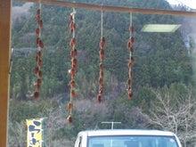 kattsu9555さんのブログ-DVC00006.jpg