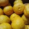 天然柚子の酵素ドリンク作りの画像