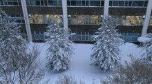山形大学 西岡研究室の毎日♪