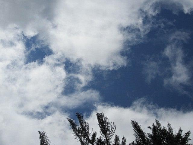 神夢里の空−2