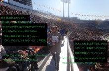 M/BSR/林田クマ(白)69連勝/将軍吉光/敢えて行ない敢えてせず