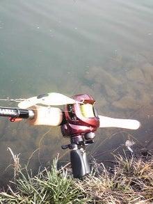 一魚専心-111231_130539.jpg
