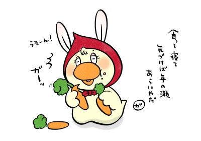 $ほっかむりあひる ガーガちゃん-20111231