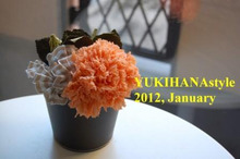 yukihana Diary