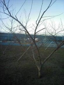 旬に生きる男のブログ-2012-01-02_16-25.jpg