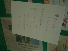 No猫虐待in那覇のブログ