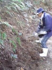 愛媛より、まほろば農園のブログ-CA3I02660001.jpg