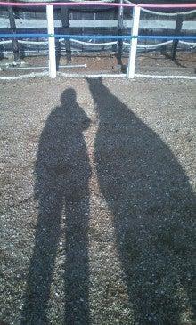 馬を愛する男のブログ Ebosikogen Horse Park-冬の影は長~い