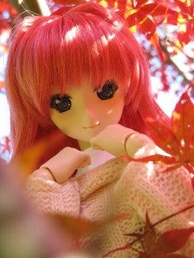 Neo.たいむのドールとホビーの道しるべ-aki11_yuki004s