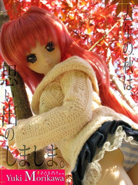 $Neo.たいむのドールとホビーの道しるべ-aki11_yuki001