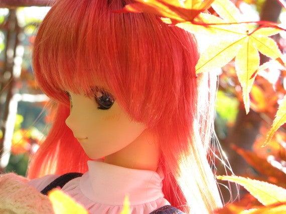 Neo.たいむのドールとホビーの道しるべ-aki11_yuki002