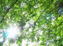 Happy Life Blog ~日本語教育・コーチング・自己表現~