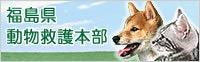 Freddieに首ったけ☆-福島県動物救護本部