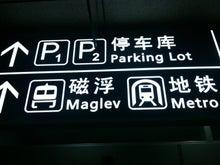 flighty life-shanghai7