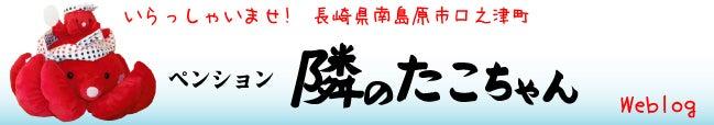 ペンション隣のたこちゃん-banner_650