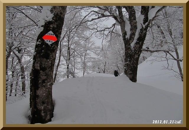 ロフトで綴る山と山スキー-0121_0908